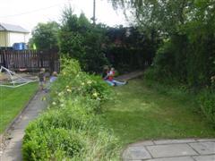 Karoline's lovely garden